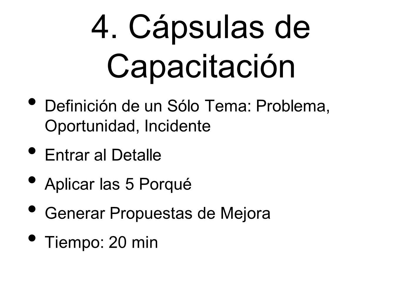 4. Cápsulas de Capacitación Definición de un Sólo Tema: Problema, Oportunidad, Incidente Entrar al Detalle Aplicar las 5 Porqué Generar Propuestas de