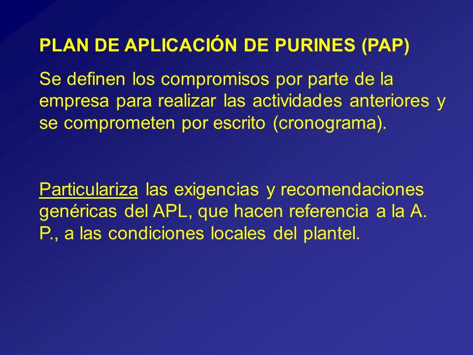PLAN DE APLICACIÓN DE PURINES (PAP) Se definen los compromisos por parte de la empresa para realizar las actividades anteriores y se comprometen por escrito (cronograma).