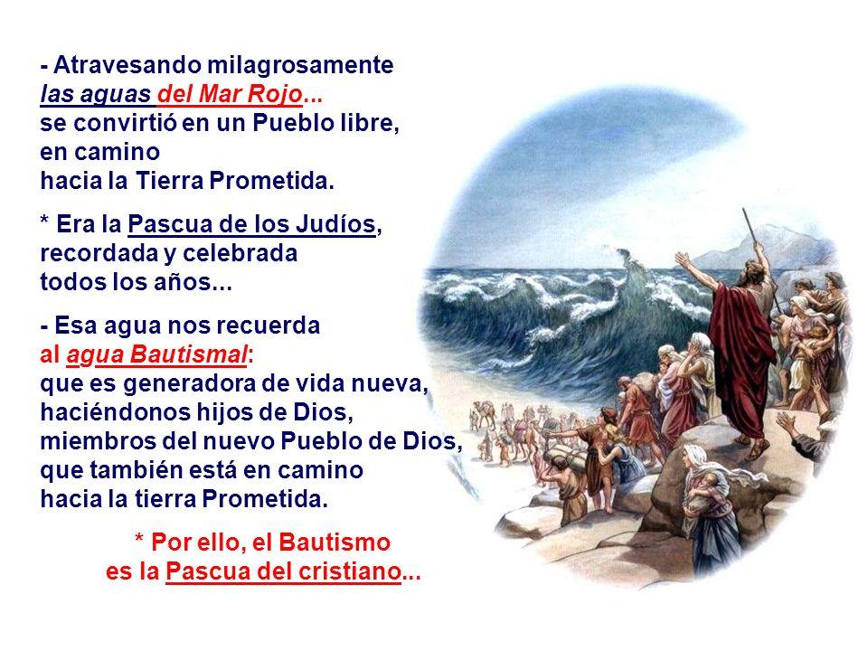 b) La LIBERACIÓN : (Ex 14,15-15,1) Dios después de haber escogido a ABRAHÁN, como Padre de un gran Pueblo escoge a MOISÉS para concienciar a ese pueblo de su misión e iniciar el camino de la Liberación...