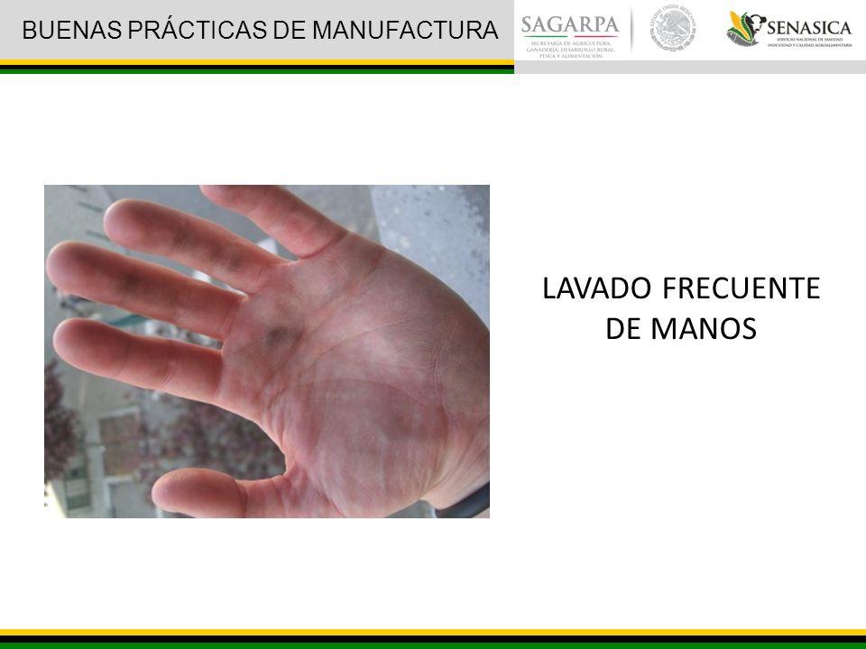 LAVADO FRECUENTE DE MANOS