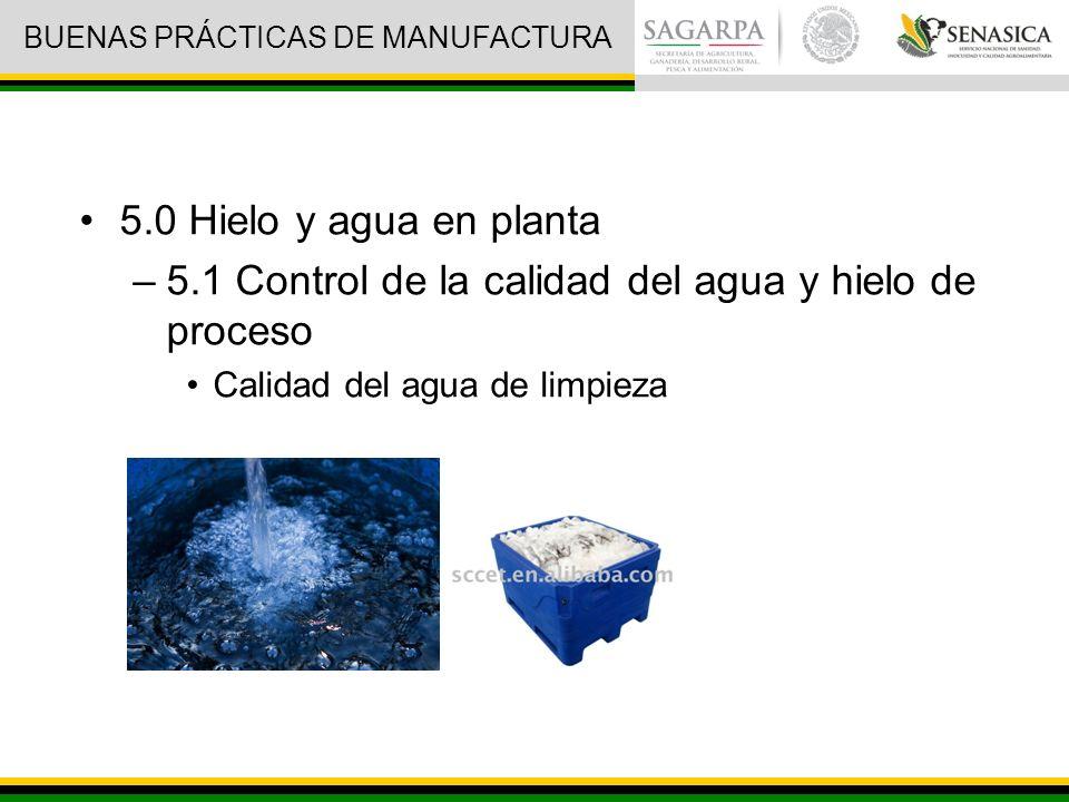 5.0 Hielo y agua en planta –5.1 Control de la calidad del agua y hielo de proceso Calidad del agua de limpieza BUENAS PRÁCTICAS DE MANUFACTURA