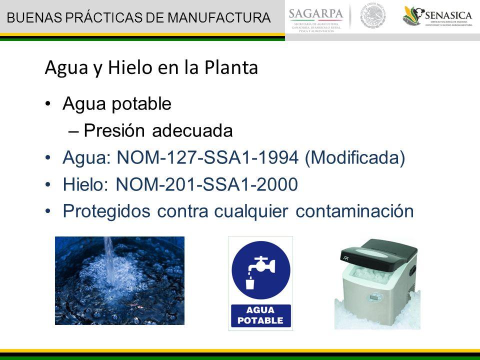 Agua potable –Presión adecuada Agua: NOM-127-SSA1-1994 (Modificada) Hielo: NOM-201-SSA1-2000 Protegidos contra cualquier contaminación Agua y Hielo en la Planta BUENAS PRÁCTICAS DE MANUFACTURA