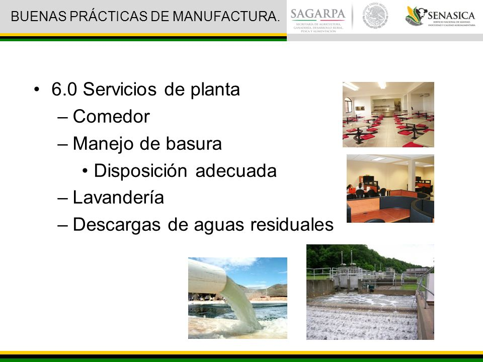 6.0 Servicios de planta –Comedor –Manejo de basura Disposición adecuada –Lavandería –Descargas de aguas residuales BUENAS PRÁCTICAS DE MANUFACTURA.