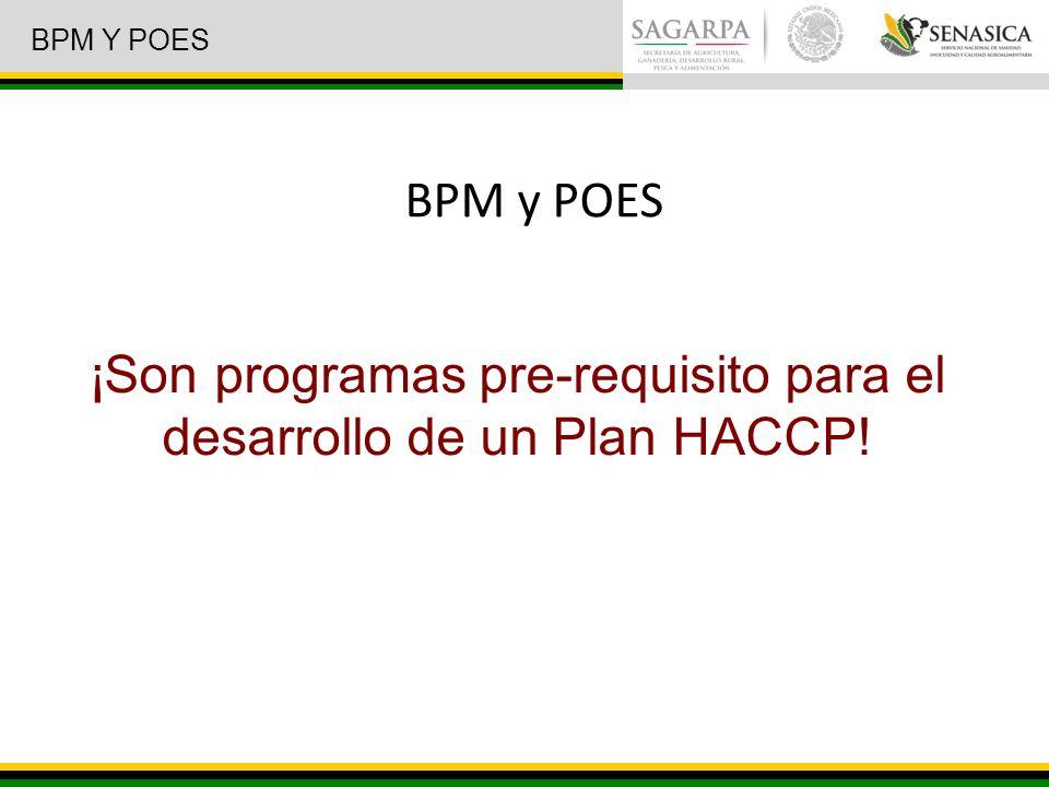 ¡Son programas pre-requisito para el desarrollo de un Plan HACCP! BPM y POES BPM Y POES