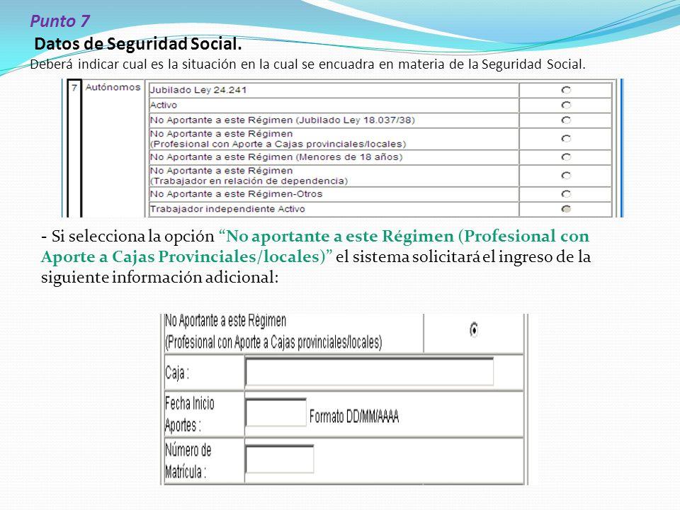 Punto 7 Datos de Seguridad Social.