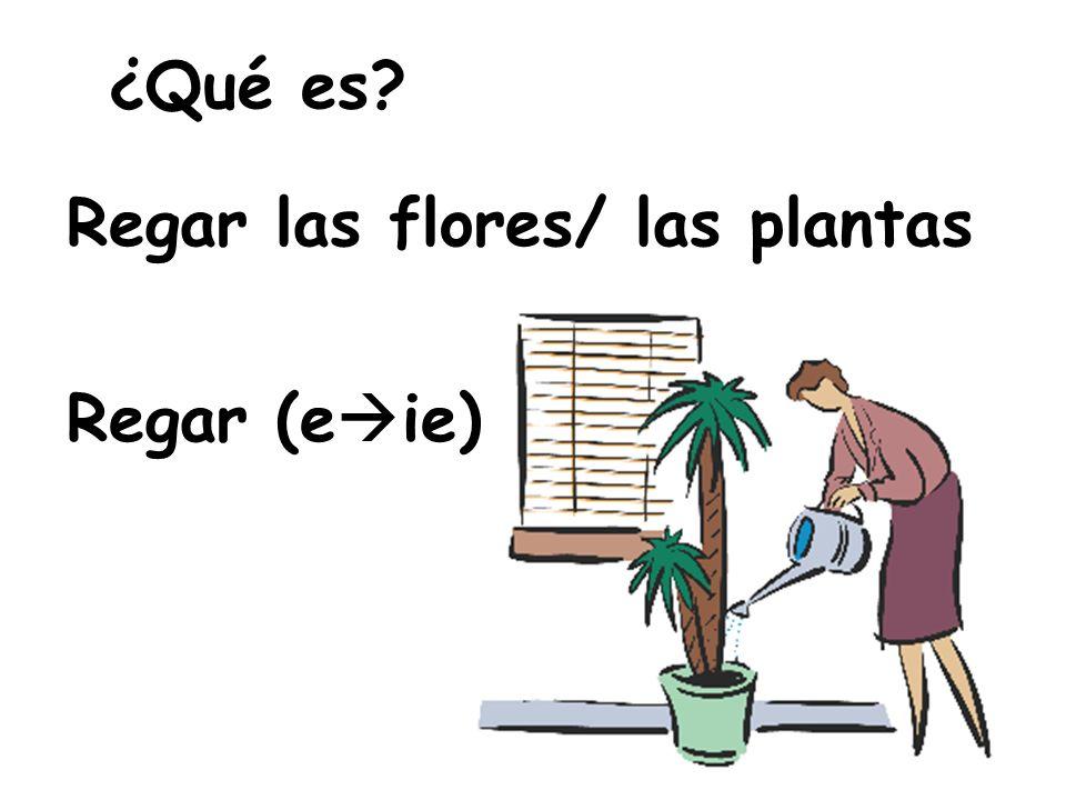 ¿Qué es Regar las flores/ las plantas Regar (e  ie)
