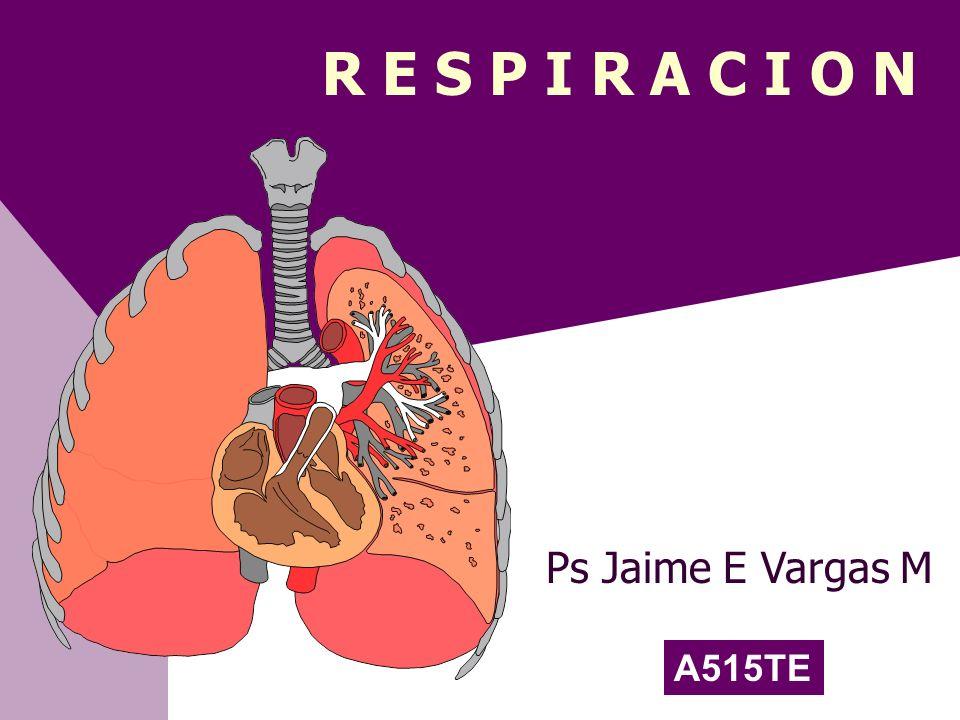 R E S P I R A C I O N Ps Jaime E Vargas M A515TE