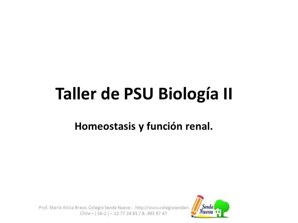 Taller de PSU Biología II Prof.María Alicia Bravo.