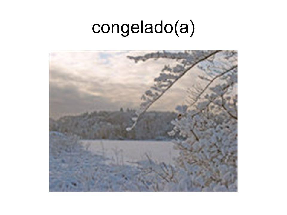 congelado(a)