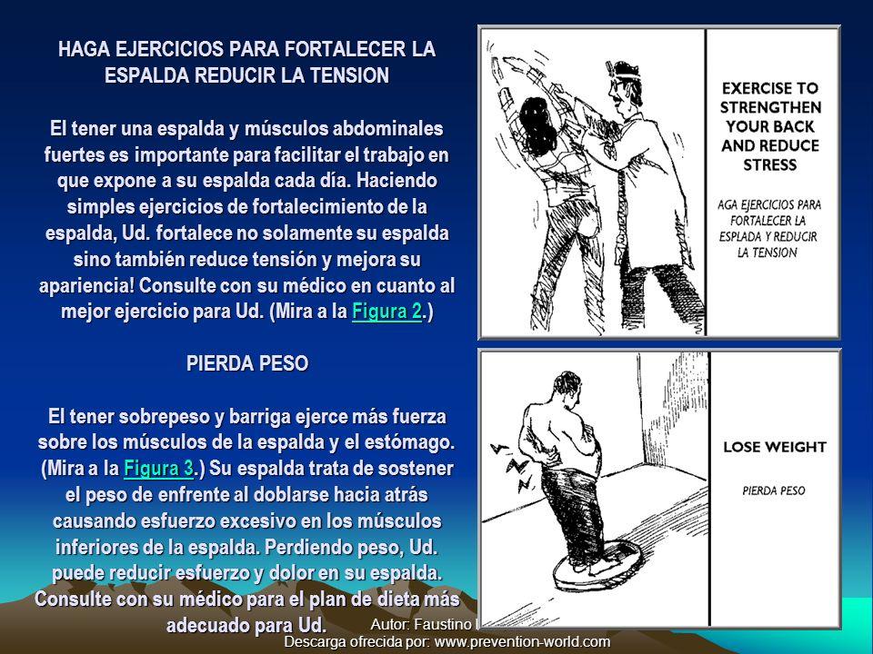 Autor: Faustino Ramos Descarga ofrecida por: www.prevention-world.com HAGA EJERCICIOS PARA FORTALECER LA ESPALDA REDUCIR LA TENSION El tener una espalda y músculos abdominales fuertes es importante para facilitar el trabajo en que expone a su espalda cada día.