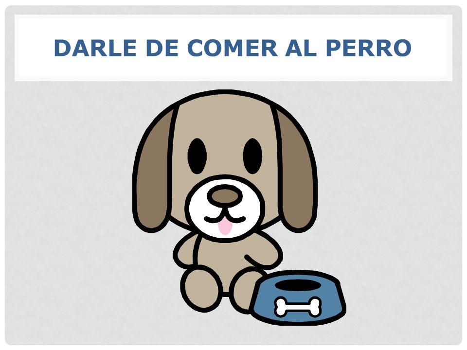 DARLE DE COMER AL PERRO