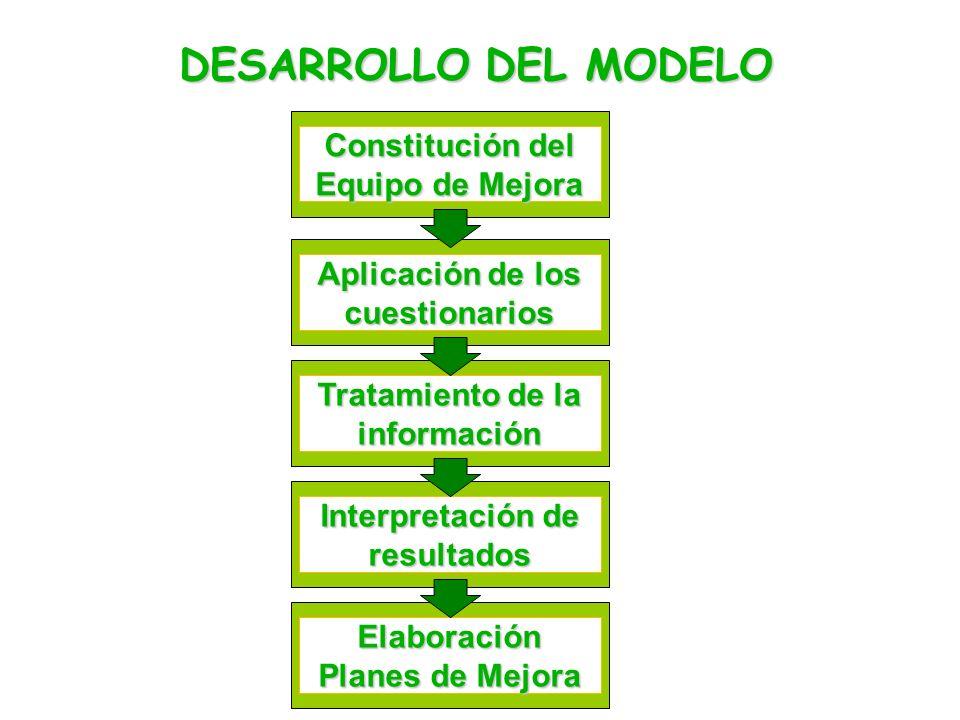 DESARROLLO DEL MODELO Constitución del Equipo de Mejora Aplicación de los cuestionarios Tratamiento de la información Interpretación de resultados Elaboración Planes de Mejora
