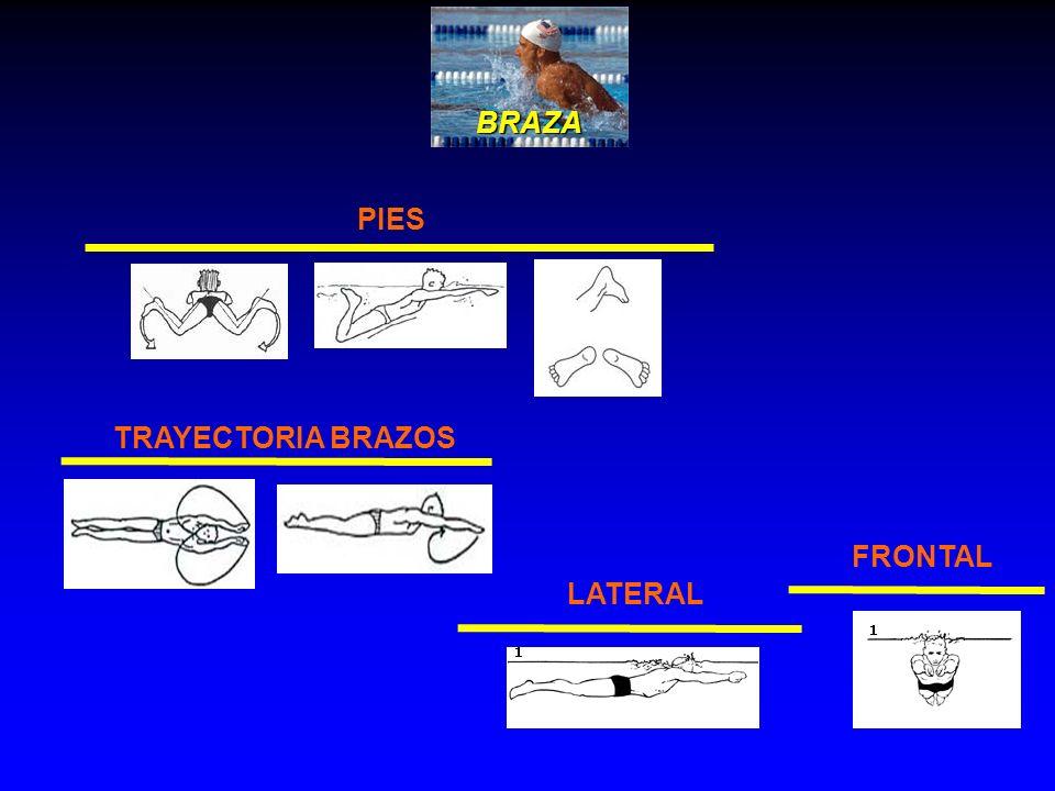 BRAZA PIES LATERAL FRONTAL TRAYECTORIA BRAZOS
