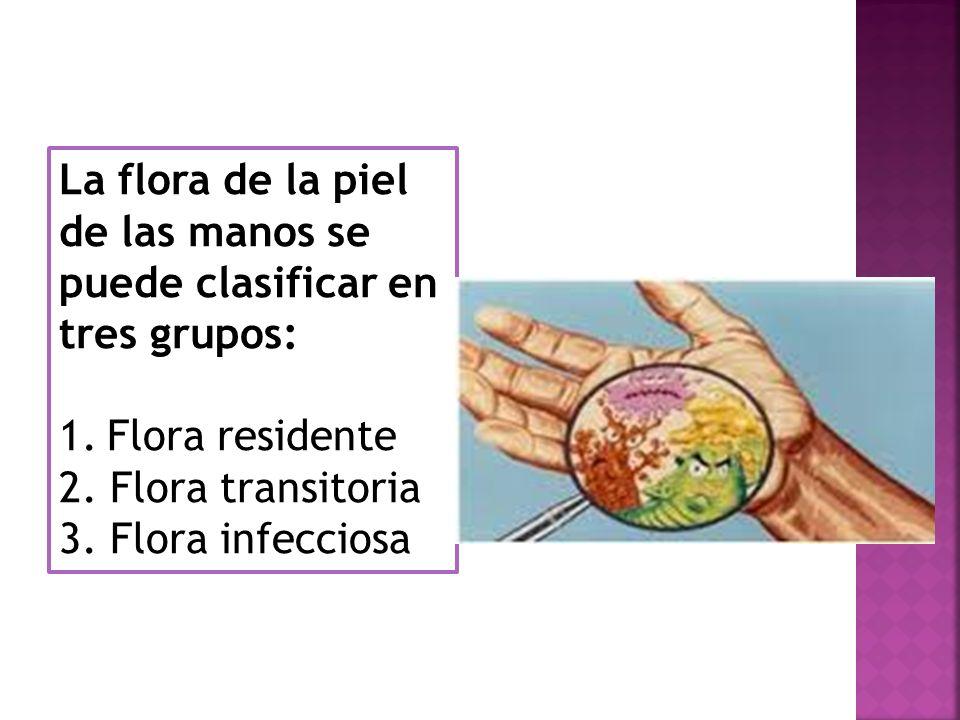 La flora de la piel de las manos se puede clasificar en tres grupos: 1.Flora residente 2. Flora transitoria 3. Flora infecciosa
