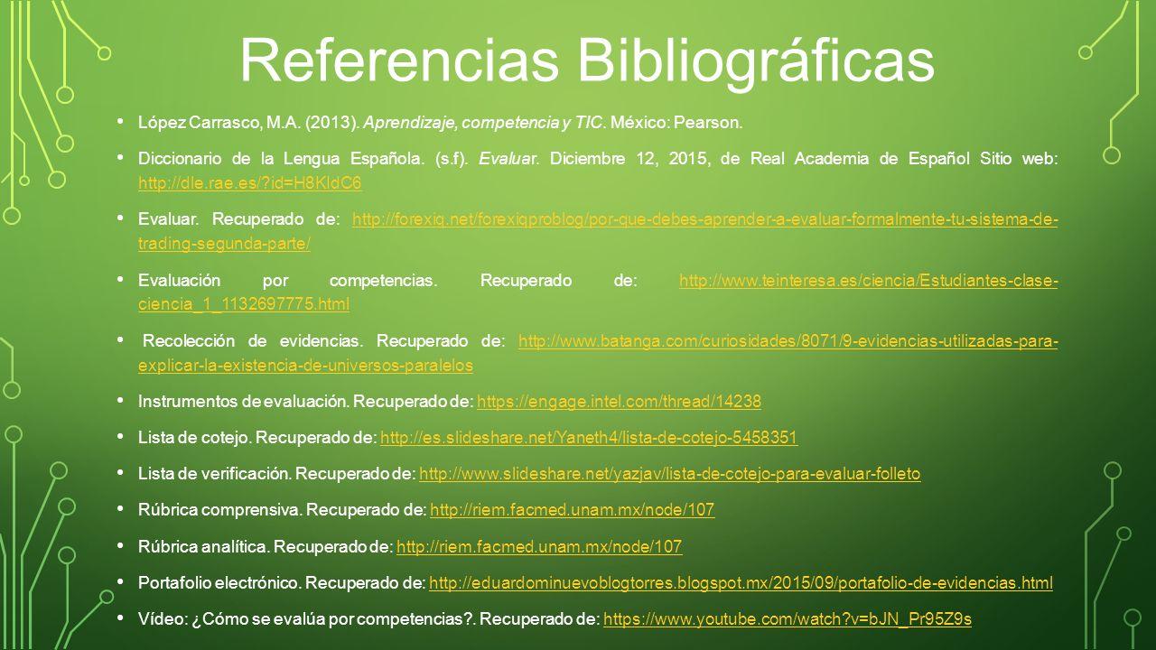 3.3 El Portafolio de Evidencias Digital como Instrumento de ...