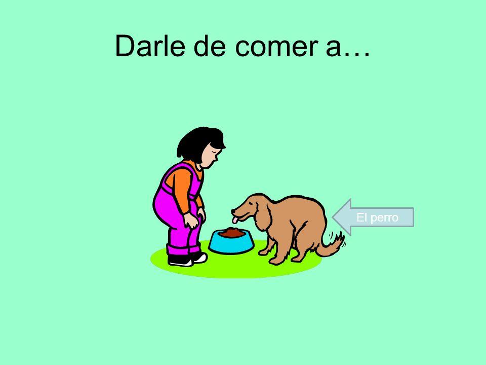 Darle de comer a… El perro