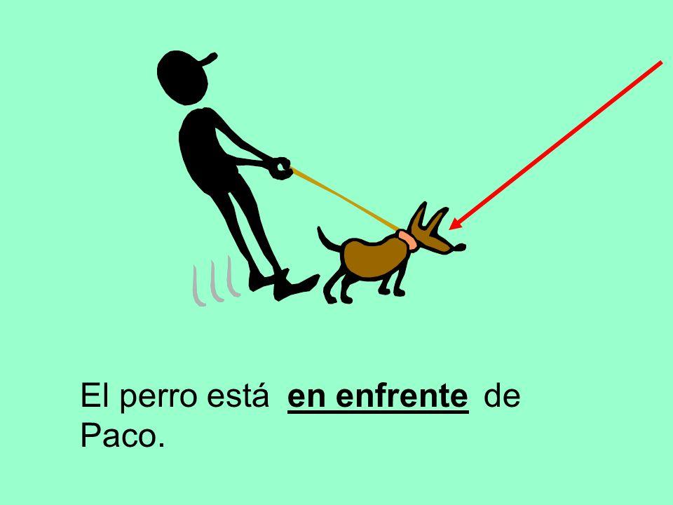 El perro está de Paco. en enfrente