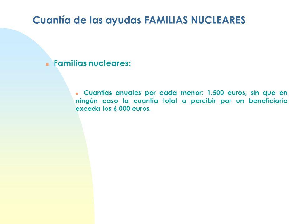 Cuantía de las ayudas FAMILIAS NUCLEARES n Familias nucleares: n Cuantías anuales por cada menor: 1.500 euros, sin que en ningún caso la cuantía total a percibir por un beneficiario exceda los 6.000 euros.