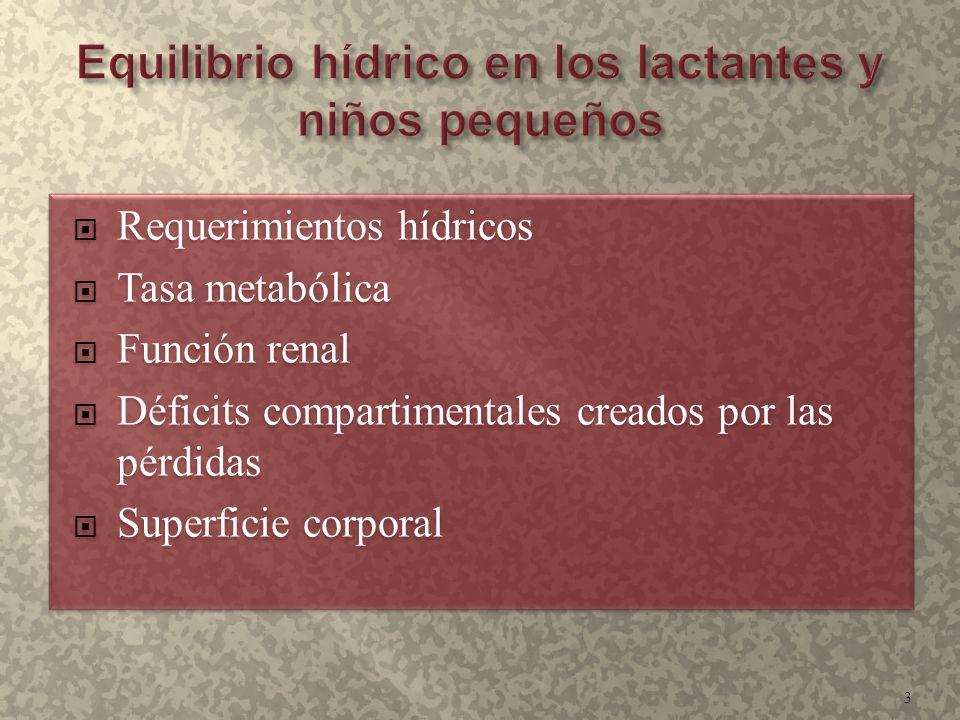  Requerimientos hídricos  Tasa metabólica  Función renal  Déficits compartimentales creados por las pérdidas  Superficie corporal  Requerimiento