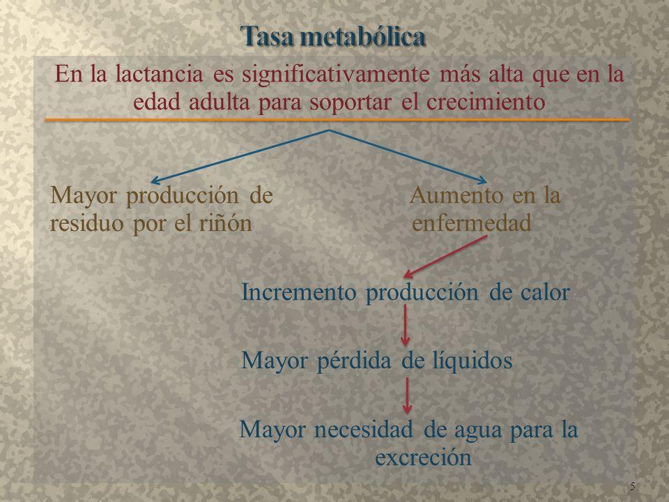En la lactancia es significativamente más alta que en la edad adulta para soportar el crecimiento Mayor producción de Aumento en la residuo por el riñ