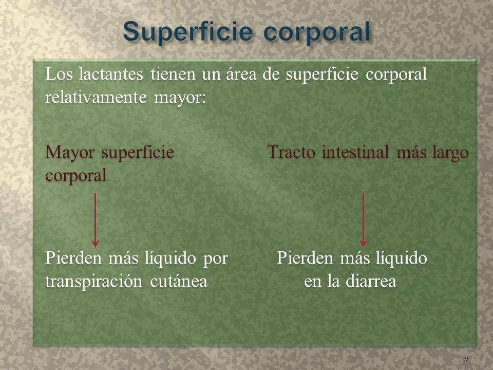 Los lactantes tienen un área de superficie corporal relativamente mayor: Mayor superficie Tracto intestinal más largo corporal Pierden más líquido por