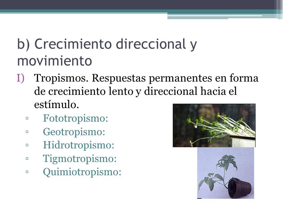 b) Crecimiento direccional y movimiento I)Tropismos.