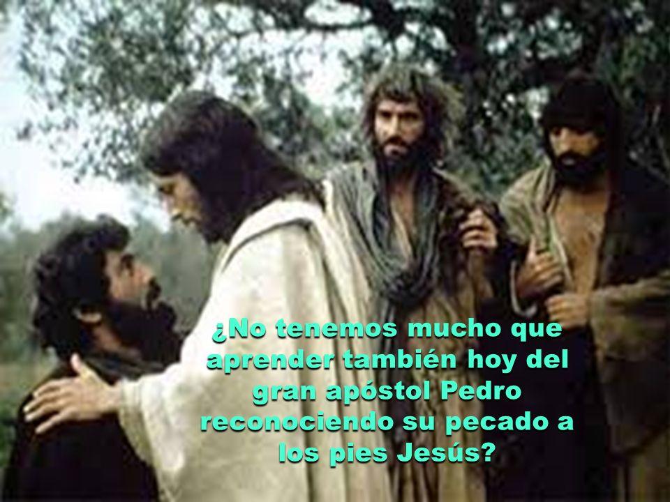 ¿No son más creíbles nuestras comunidades cuando colaboran con Cristo en la tarea evangelizadora, reconociendo humildemente sus pecados y comprometiéndose a una vida cada vez más evangélica