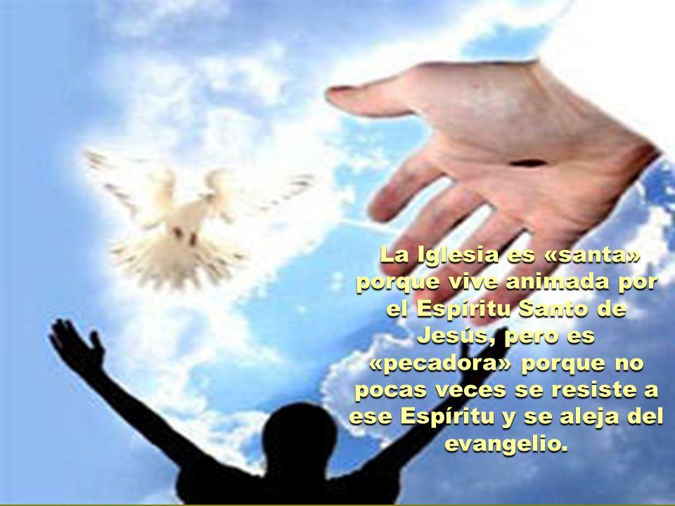 La Iglesia es «santa» porque vive animada por el Espíritu Santo de Jesús, pero es «pecadora» porque no pocas veces se resiste a ese Espíritu y se aleja del evangelio.