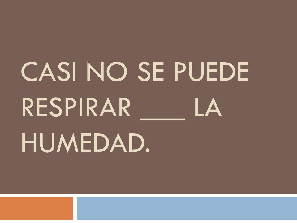 CASI NO SE PUEDE RESPIRAR ___ LA HUMEDAD.