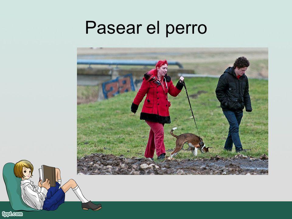Pasear el perro