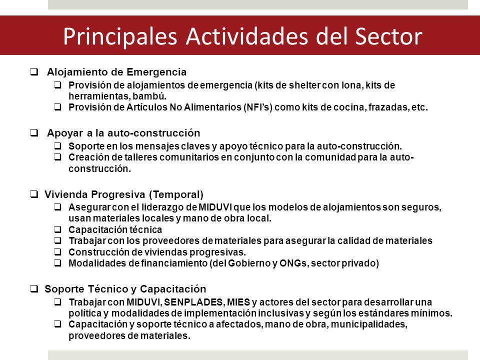 Principales Actividades del Sector  Alojamiento de Emergencia  Provisión de alojamientos de emergencia (kits de shelter con lona, kits de herramientas, bambú.