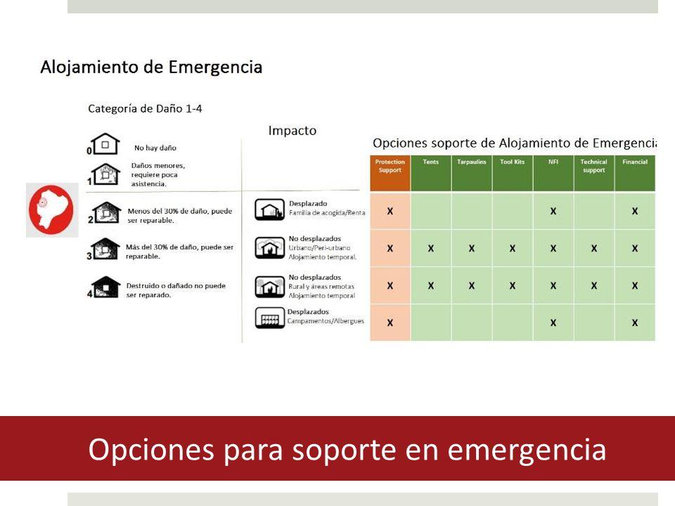 Opciones para soporte en emergencia