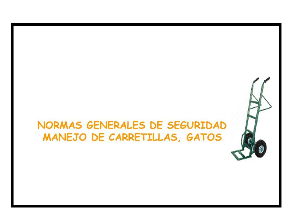 NORMAS GENERALES DE SEGURIDAD MANEJO DE CARRETILLAS, GATOS