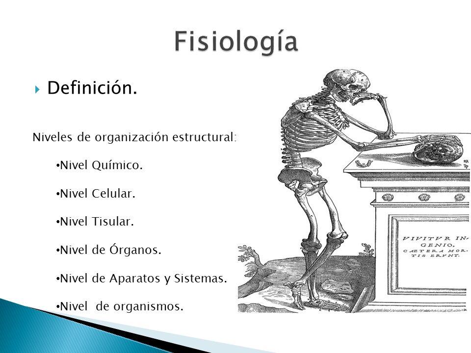  Definición. Niveles de organización estructural: Nivel Químico.