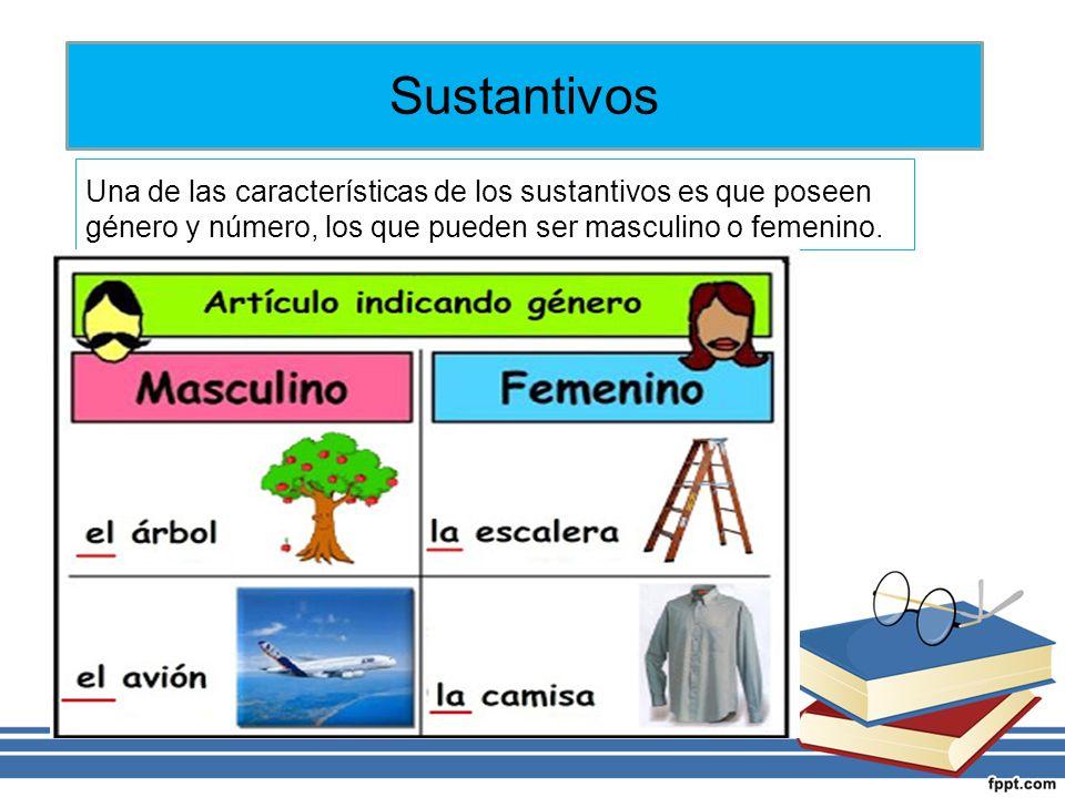 Una de las características de los sustantivos es que poseen género y número, los que pueden ser masculino o femenino.