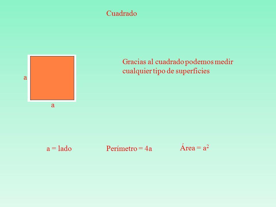 Cuadrado a a a = ladoPerímetro = 4a Área = a 2 Gracias al cuadrado podemos medir cualquier tipo de superficies