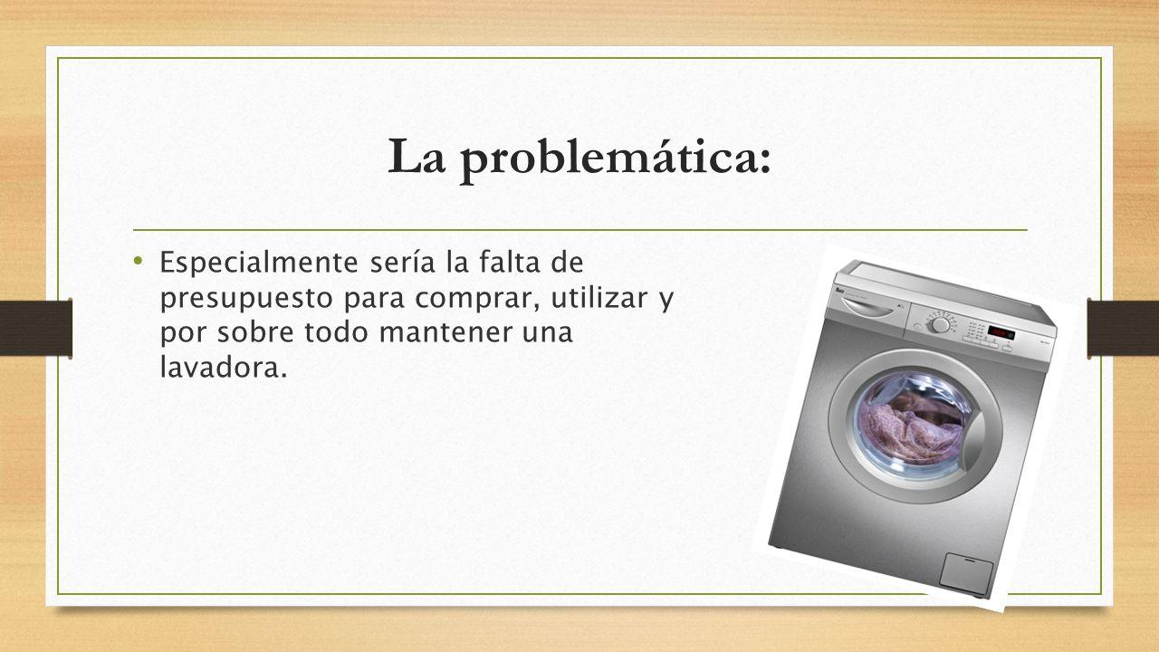 La problemática: Especialmente sería la falta de presupuesto para comprar, utilizar y por sobre todo mantener una lavadora.