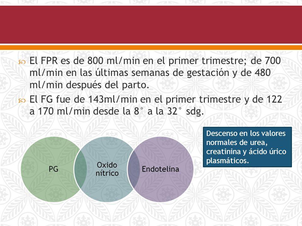 sintomas de cristales de acido urico en la orina como reducir los niveles de acido urico naturalmente te verde contra el acido urico