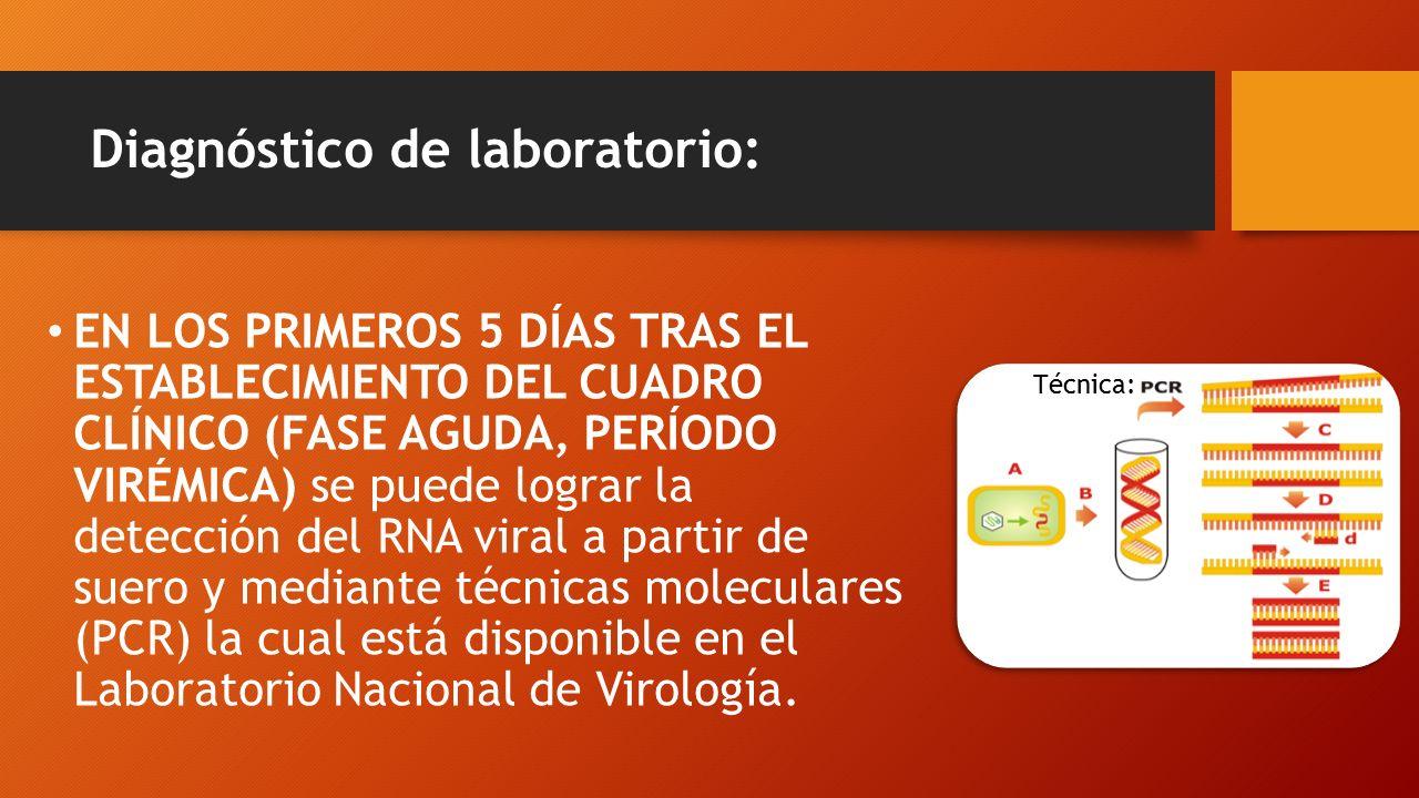 Diagnóstico de laboratorio: EN LOS PRIMEROS 5 DÍAS TRAS EL ESTABLECIMIENTO DEL CUADRO CLÍNICO (FASE AGUDA, PERÍODO VIRÉMICA) se puede lograr la detección del RNA viral a partir de suero y mediante técnicas moleculares (PCR) la cual está disponible en el Laboratorio Nacional de Virología.
