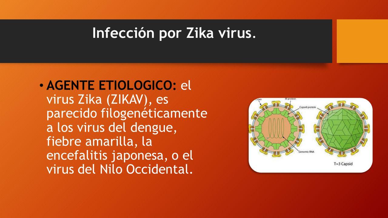 Infección por Zika virus.