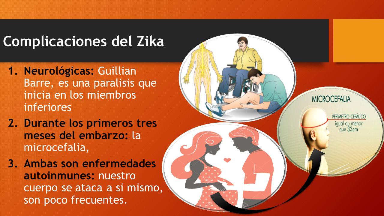 Complicaciones del Zika 1.Neurológicas: Guillian Barre, es una paralisis que inicia en los miembros inferiores 2.Durante los primeros tres meses del embarzo: la microcefalia, 3.Ambas son enfermedades autoinmunes: nuestro cuerpo se ataca a si mismo, son poco frecuentes.