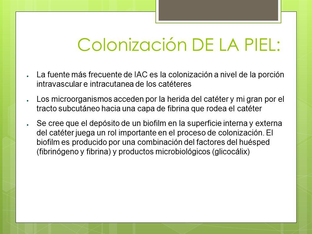 Colonización DE LA PIEL: ● La fuente más frecuente de IAC es la colonización a nivel de la porción intravascular e intracutanea de los catéteres ● Los