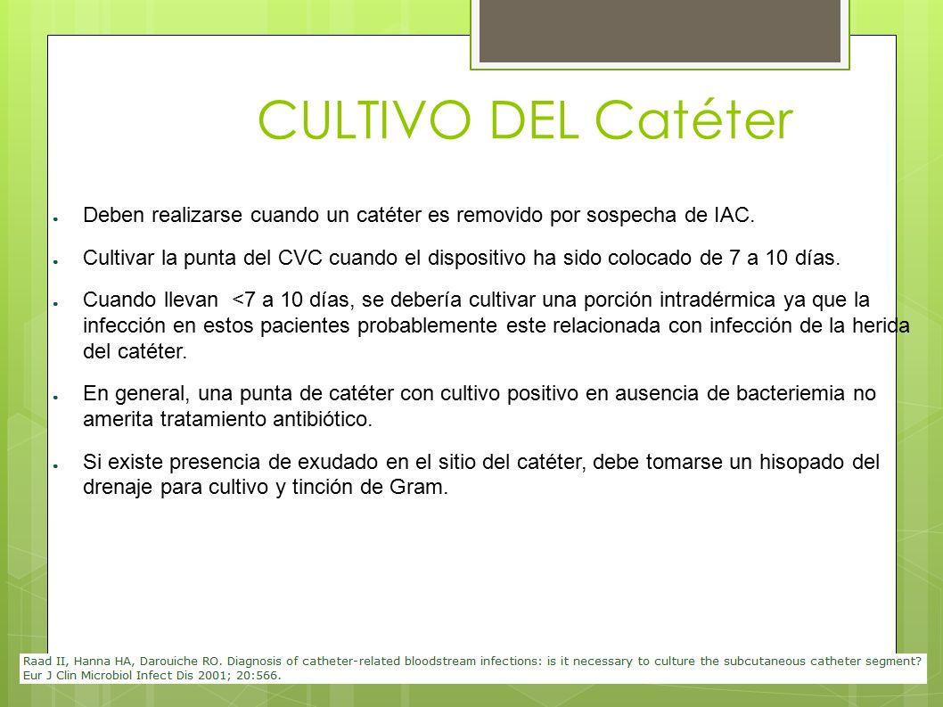 CULTIVO DEL Catéter ● Deben realizarse cuando un catéter es removido por sospecha de IAC. ● Cultivar la punta del CVC cuando el dispositivo ha sido co