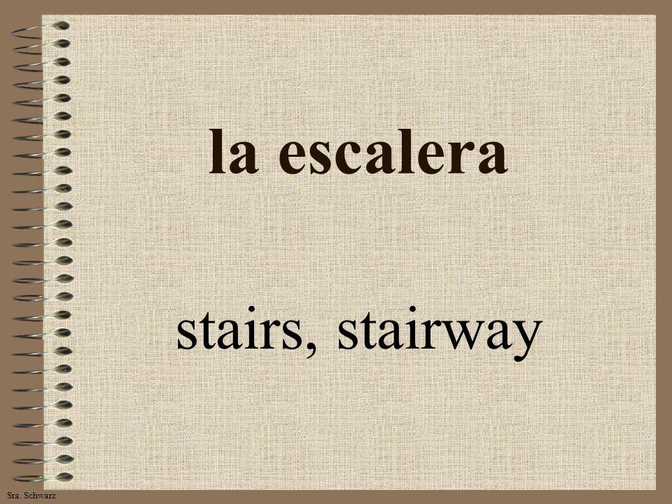 Sra. Schwarz la escalera stairs, stairway