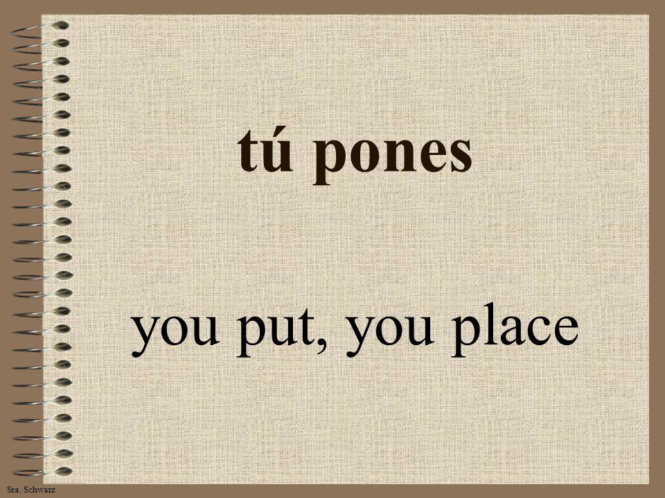 Sra. Schwarz tú pones you put, you place