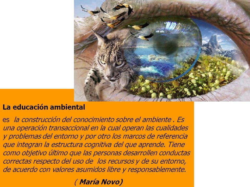 La educación ambiental es la construcción del conocimiento sobre el ambiente.