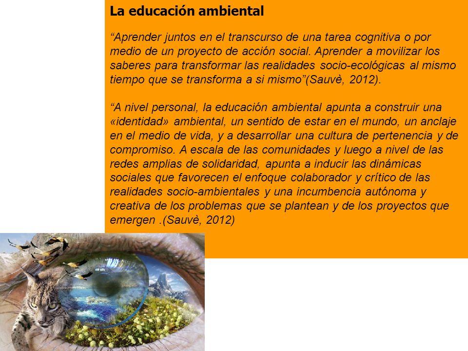 La educación ambiental Aprender juntos en el transcurso de una tarea cognitiva o por medio de un proyecto de acción social.