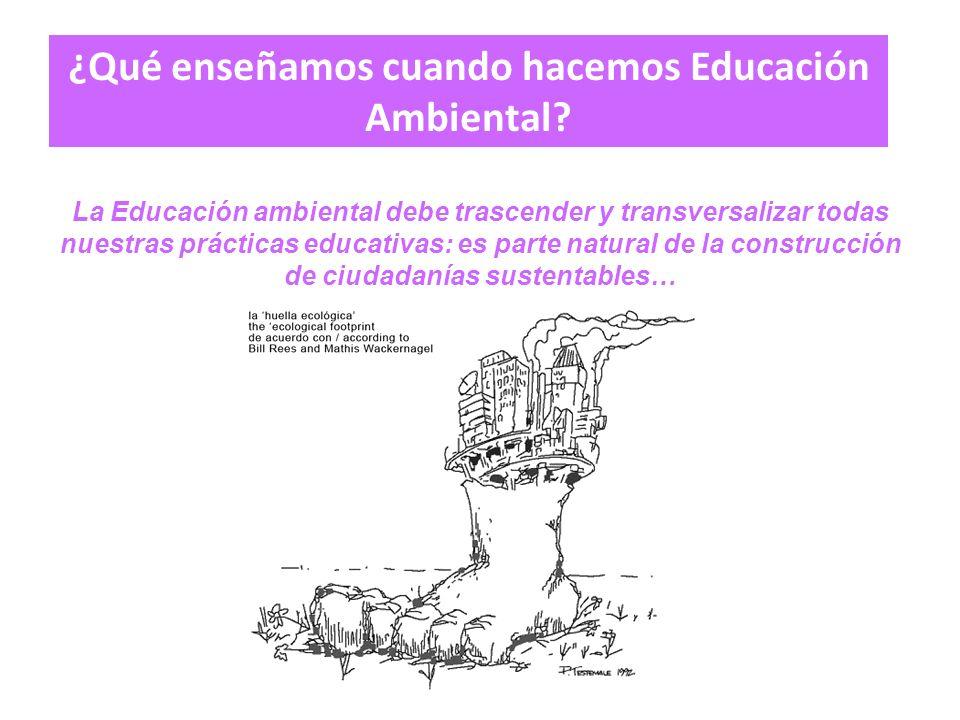 La Educación ambiental debe trascender y transversalizar todas nuestras prácticas educativas: es parte natural de la construcción de ciudadanías sustentables… ¿Qué enseñamos cuando hacemos Educación Ambiental
