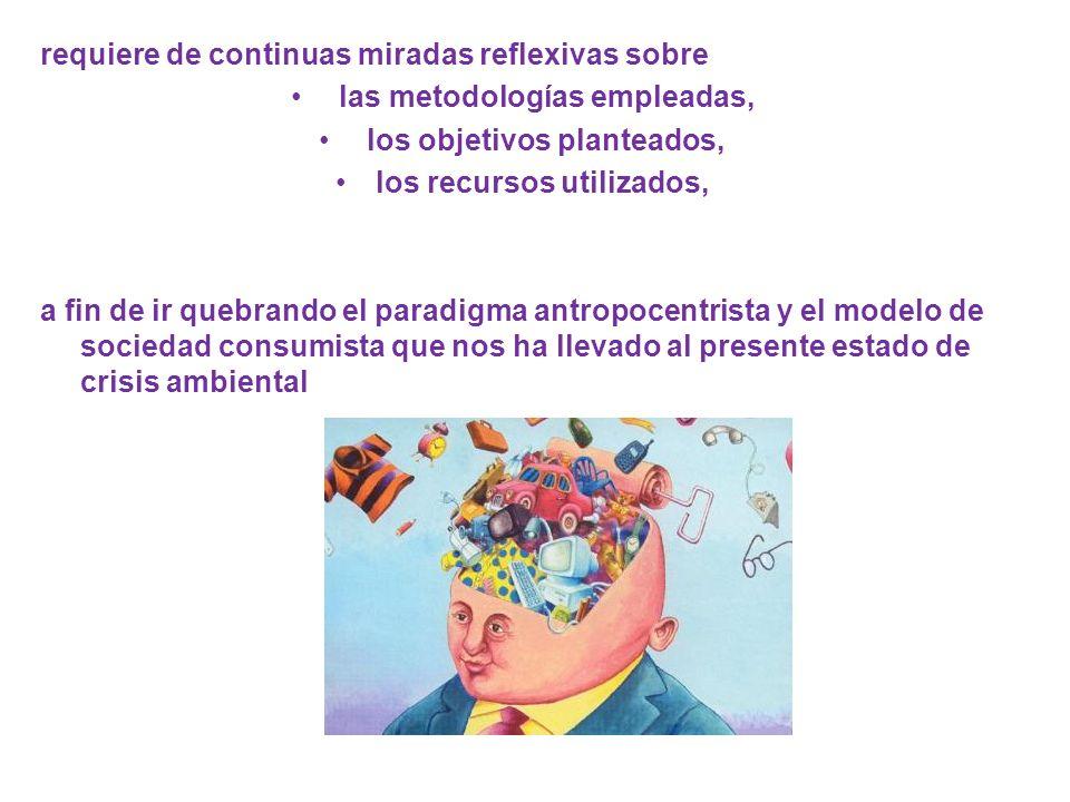 Partir de quien aprende Conceptos previos, representaciones mentales, patrones culturales y saberes ancestrales Aprendizajes significativos Respeto por los estadios del desarrollo cognitivo y por los niveles de alfabetización alcanzados