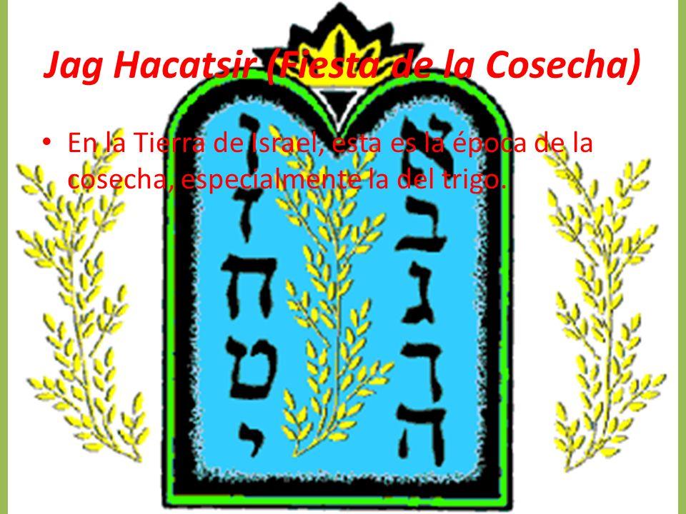 Jag Hacatsir (Fiesta de la Cosecha) En la Tierra de Israel, esta es la época de la cosecha, especialmente la del trigo.